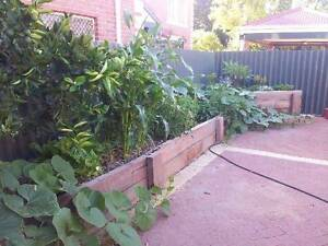 High Quality WA made raised gardens Greenwood Joondalup Area Preview