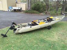Viking Tempo Tandem Kayak inc Motor Molendinar Gold Coast City Preview