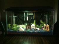 2 Fish tanks and acessories for sale. Plus Metal Stand