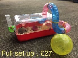 Hamster cage with tubes and accessories