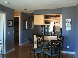 Brand new fully furnished & equipped 1 bdrm suite