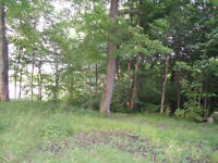 Vacant Lot on Howes Lake