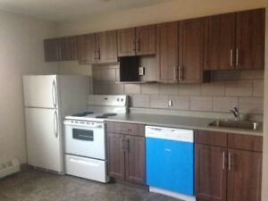 One Bedroom Suite Available Close to Health Sciences Centre