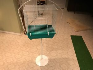 Antique Bird Cage Stand with modern day cage
