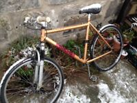 Simple one gear commuter / pub bike. Needs new inners.