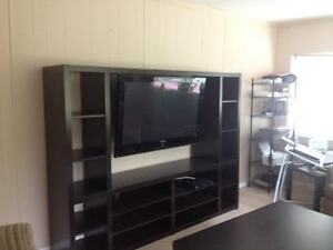 Large Entertainment Unit For Sale - Nearly New - Squamish