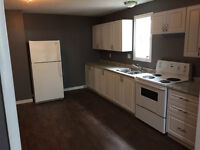Newly Renovated 2BR Main Floor Unit - Downtown