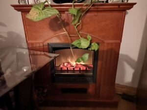 Entertainment Unit and Electric Fireplace - Great Condition!