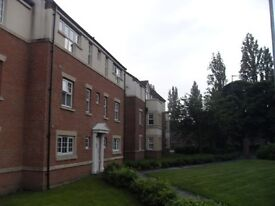 Lovely 2 bed apartment (December rent only £250.00)