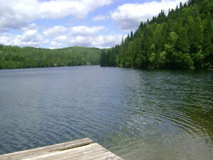 300 ACRES ZONED RÉSIDENTIAL AND RESORT AROUND THE LAKE NEIL