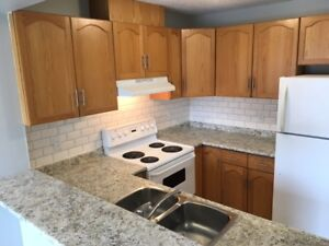 Newly Renovated 4 Bedroom Townhouse in Guelph - Avail Feb 1/18