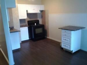 Nicely Renovated 2 bedroom with fireplace