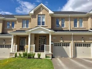 New Energy Efficient Home In High Demand for RENT