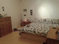 Good sized double room in Saint Paul's, to share with one other lodger and the owner...