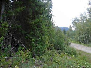 Lot 9 Old Crowfoot Road, Shuswap Lake