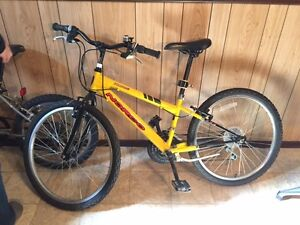 Norco Mountain bike with 24 inch wheels