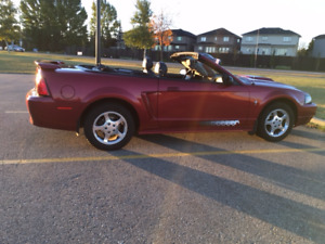 2003 Ford Mustang Pony Package Convertible - a great Xmas Gift