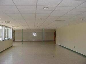T-Bar Ceilings and PC350 Frames. (Commercial/Residential) Kitchener / Waterloo Kitchener Area image 2