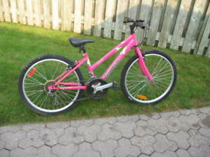 Ladies Mountain Bicycle