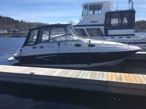 MINT Cruiser Boat GLASTRON GS289 Must See