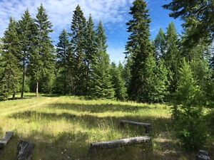Build your Dream Home!  Beautiful 2.47 Acre Lot near Creston BC.