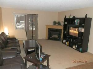 Amazing one bedroom apartment near Chinook