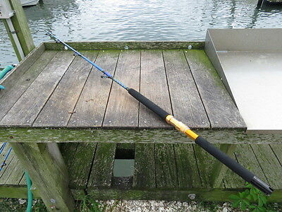 Coastal Rods - 100lb Roller Saltwater fishing rod - Brand New