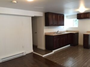 Modern, Updated, Fairview Apartment - Available July!