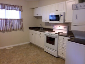 Bright 2 bedroom Suite for Rent - Aldergrove