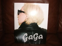 LADY GAGA picture book