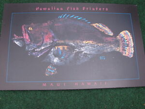 Hawaiian Fish Printers-Maui Hawaii