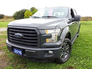 2016 Ford F-150 XLT *V8* *LEATHER* *TWIN PANEL SUNROOF*