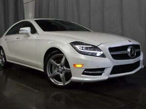 2014 Mercedes-Benz CLS-Class Base CLS 550 4dr All-wheel Drive 4M