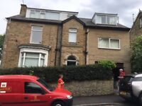 Very spacious 1 bedroom ground floor flat , 29 Oakhill Road, Nether Edge S7 1SJ