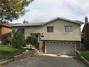 Spacious Bungalow With A Large Yard Close To All Amenities!