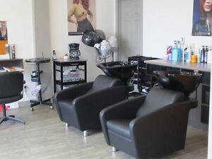 Location d'une chaise de coiffure à Valleyfield West Island Greater Montréal image 3