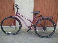 Lady Bicycle For Sale