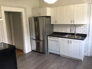 Newly Renovated 4 Bedroom Apartment near Dalhousie and Kings