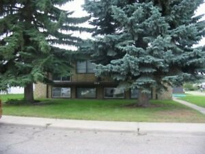 Walking distance to Bower Ponds and walking/bike trails. - 3...