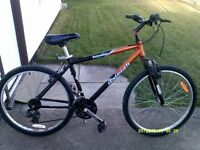 2 Raleigh mountain bikes