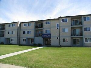 Large 2 Bedroom Condo - in suite laundry & dishwasher
