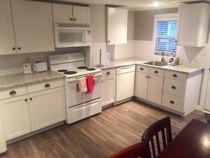 Downtown Executive Fully-Furnished Home Available May 1st!