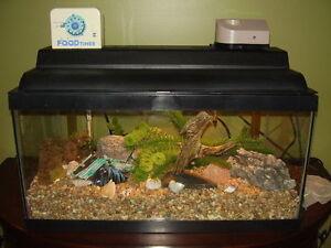 Top of the line accessories for Aquarium 20+ gallon