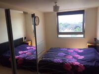 HUGE DOUBLE ROOM IN SUTTON TOWN CENTRE