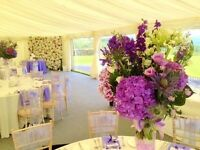 Administration Role for a busy Marquee and Events company - Central-Structures