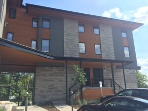 Upgraded 2 Bedroom Apartment Available November 1st on Arkell