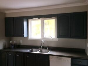 Cabinets, Counter tops & Island for Sale