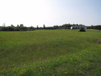 Build your Dream house on this 1 acre lot