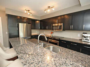 Gorgeous Brand New Furnished Condo for Rent in Cloverdale!!! Edmonton Edmonton Area image 3