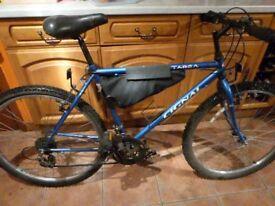 Cheap mens mountain bike